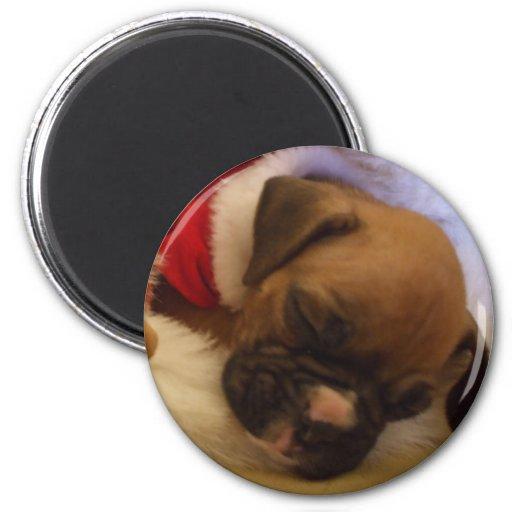 Imán soñoliento del perrito del boxeador del navid