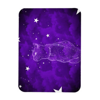 Imán Stargazing del gato