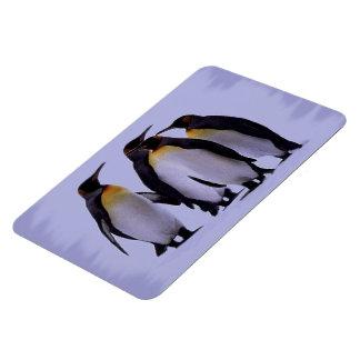 "Imán superior 4x6 de cuatro pingüinos """