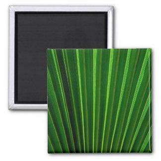 Imán verde de la fan