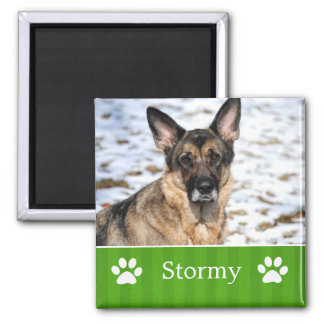 Imán verde personalizado de la foto del mascota de