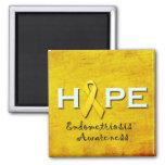 Imanes de la conciencia de la endometriosis