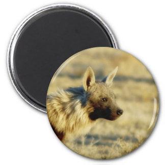 Imanes de la fauna del hyena de Brown Imán Redondo 5 Cm