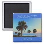Imanes de la Florida de la palmera de la playa de  Imanes