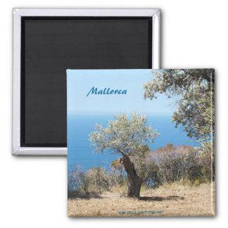Imanes de Mallorca