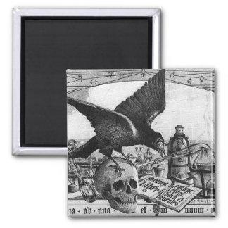 imanes del cuervo y del cráneo de la alquimia imán cuadrado