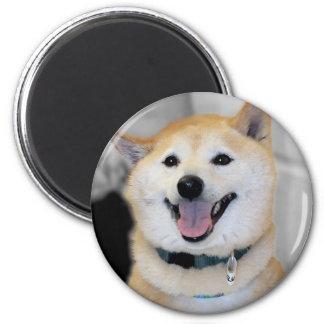 Imanes del refrigerador de la raza del perro de imán redondo 5 cm