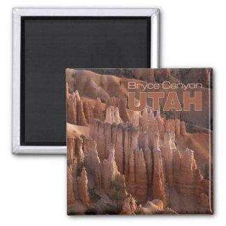 Imanes del refrigerador del recuerdo de Utah de la Iman