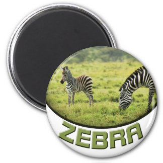 Imanes del safari de la fauna de la cebra y del imán redondo 5 cm
