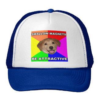 Imanes del trago del perro del consejo gorras de camionero