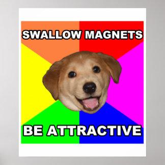 Imanes del trago del perro del consejo póster