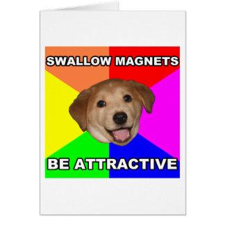 Imanes del trago del perro del consejo felicitacion