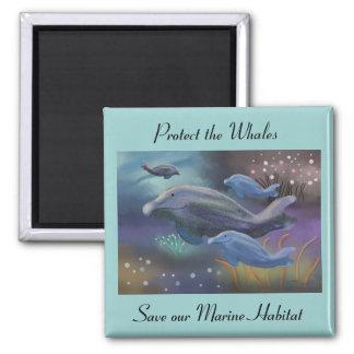 Imanes marinos de la protección del hábitat imán cuadrado