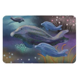 Imanes marinos del hábitat