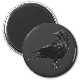 Imanes negros del cuervo imán