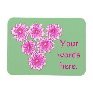 Imanes rosados de los crisantemos de las flores de
