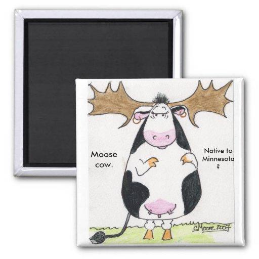 ¿img0002111, vaca de los alces., nativo a Minnesot Imán Cuadrado