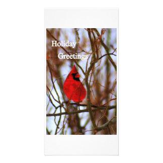 img026  Holiday Greetings Card