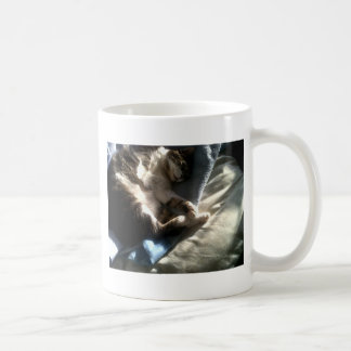 IMG04106-20120126-1449 COFFEE MUG