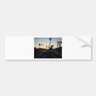 IMG495.jpg Bumper Sticker