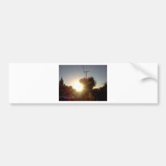 IMG637.jpg Bumper Sticker