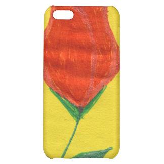 img698 iPhone 5C case