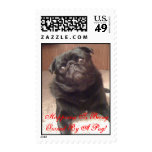 IMG_0158.JPG, Happiness Is Being Owned By A Pug! Postage Stamps