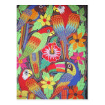 IMG_0203.jpg Birds of Panama Post Cards