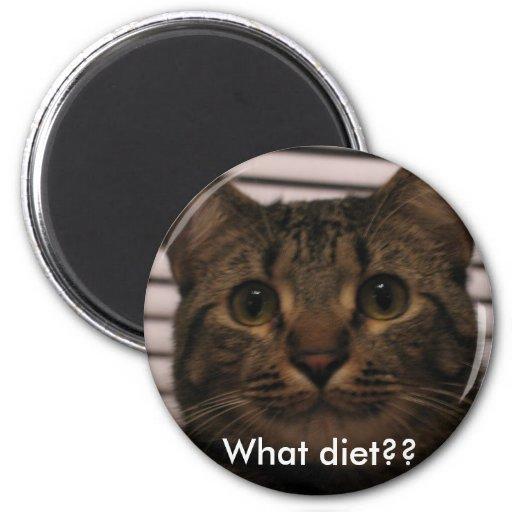 ¿IMG_0234, qué dieta?? Imanes