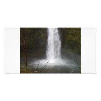 IMG_0281 CARD