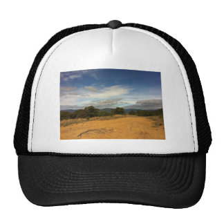 IMG_0345 TRUCKER HATS