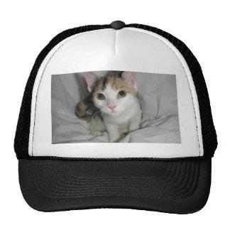 IMG_0662 TRUCKER HAT