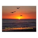IMG_0725, Surf City Huntington Beach California Post Card