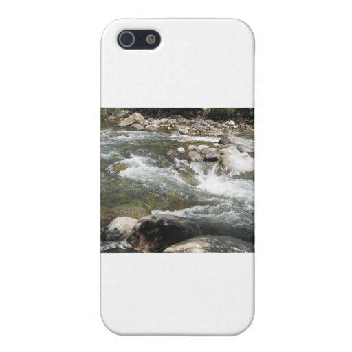 IMG_0947rapids iPhone 5 Cárcasas