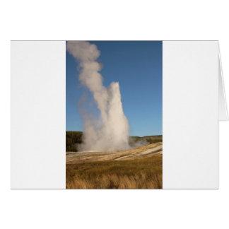 IMG_1081_1 CARD