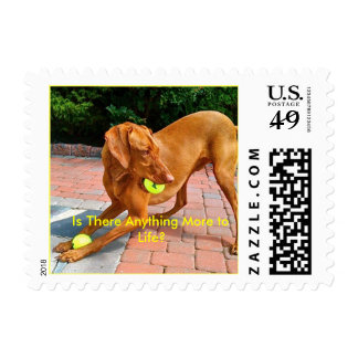 IMG_1153, Is There Anything More to Life? Postage Stamps