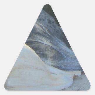 IMG_1498 (3).jpg Pegatina Triangular