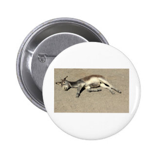 IMG_1521-1 PINBACK BUTTONS
