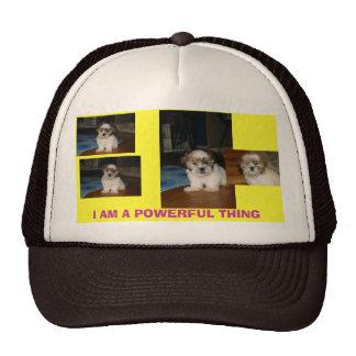 IMG_1521, IMG_1531, IMG_1519, link, I AM A POWE... Trucker Hat