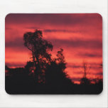IMG_1551 MOUSE PAD