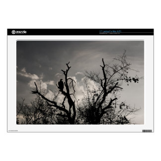 IMG_1573.jpg Laptop Decal