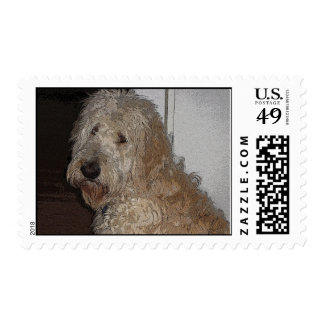 IMG_1602ab Postage Stamp