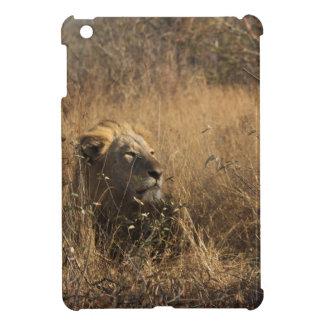 IMG_1679.jpg iPad Mini Covers