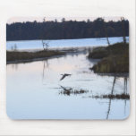 IMG_1702 MOUSE PAD