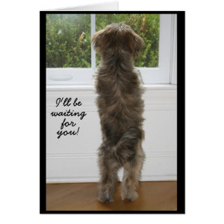 IMG_1950, I'll be, waiting , for, you! Greeting Card