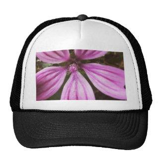 IMG_20150812_213125.jpg Trucker Hat