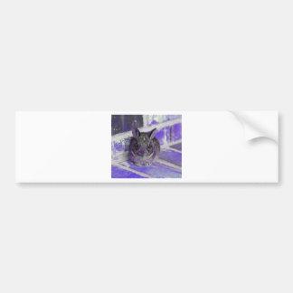 IMG_2046_purple_bunny Bumper Sticker