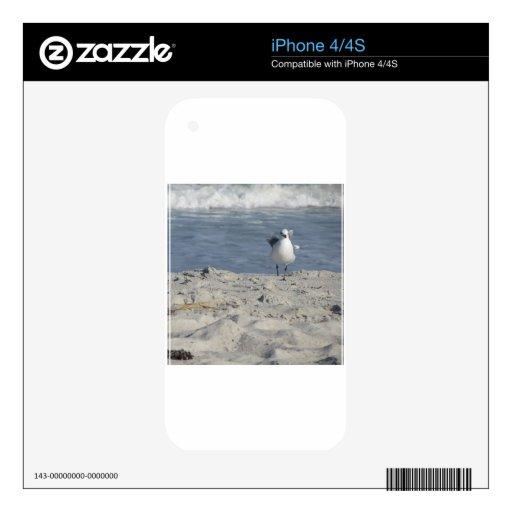 IMG_2329.JPG iPhone 4 CALCOMANÍAS