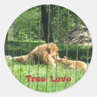 IMG_2334, True Love, True Love Classic Round Sticker