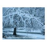 IMG_2425_2, nevadas del domingo por la mañana en C Postales